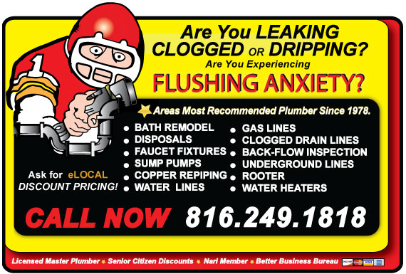 Exclusive Ad: The Plumbing Pro  8163483590 Logo