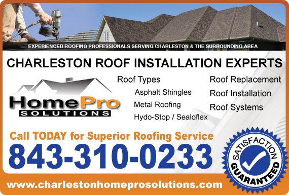 Exclusive Ad: HomePro Solutions  8433100233 Logo