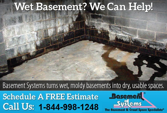 Exclusive Ad: Basement Systems  8888987626 Logo