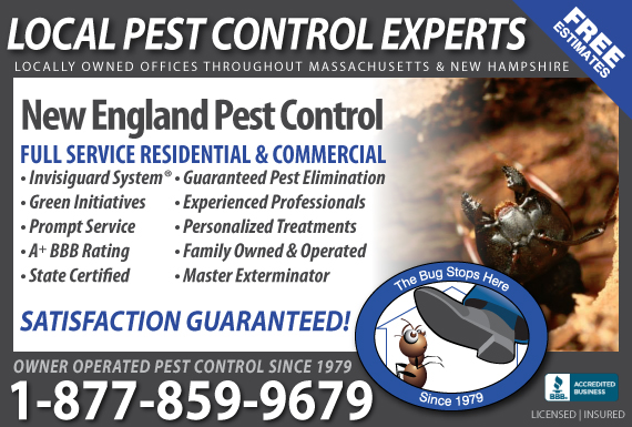 Exclusive Ad: New England Pest Control Rutland 2396425585 Logo