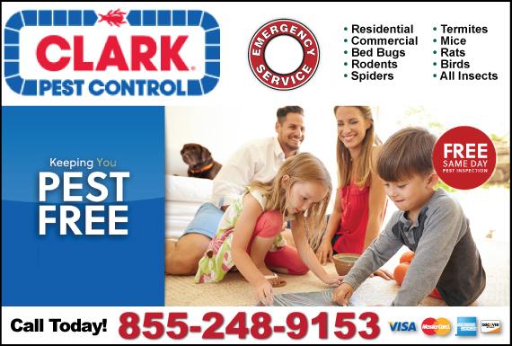 Exclusive Ad: Clark Pest Control Belmont 8009363339 Logo