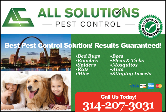 Exclusive Ad: All Solutions Pest Control Saint Charles 6364867888 Logo