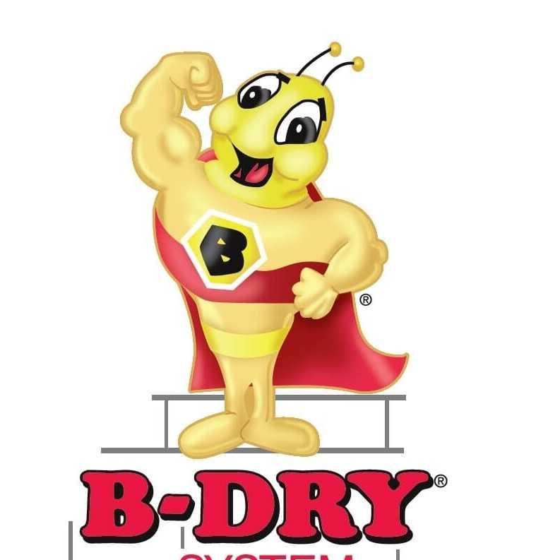B-Dry System of Southeastern Michigan Inc. Logo