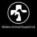 Animal Health Clinic & Hospital of Lake County, L.T.D - 563943 Logo