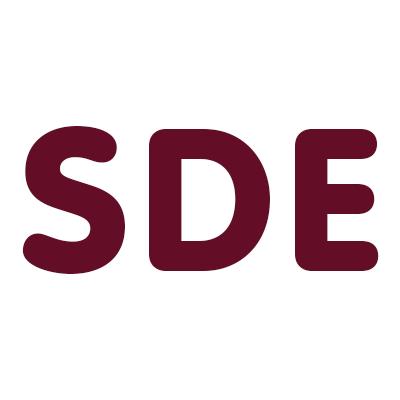 Steam Dry Logo