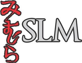 Susan Lynn Mimura & Associates, Pllc Logo