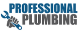 Professional Plumbing Logo