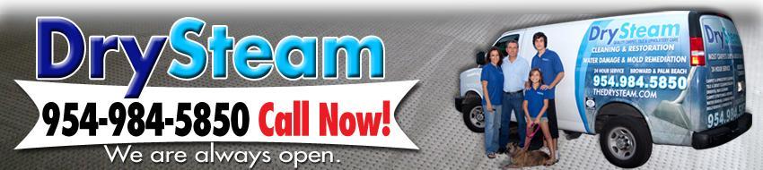 Drysteam Cleaning & Restoration Logo