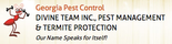 Divine T.E.A.M. Inc. Pest Mgmt and Termite Protection Logo
