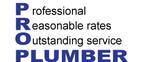 Pro Plumber  Logo
