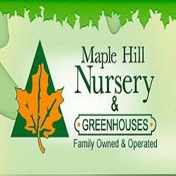 Maple Hill Nursery & Green Houses Logo