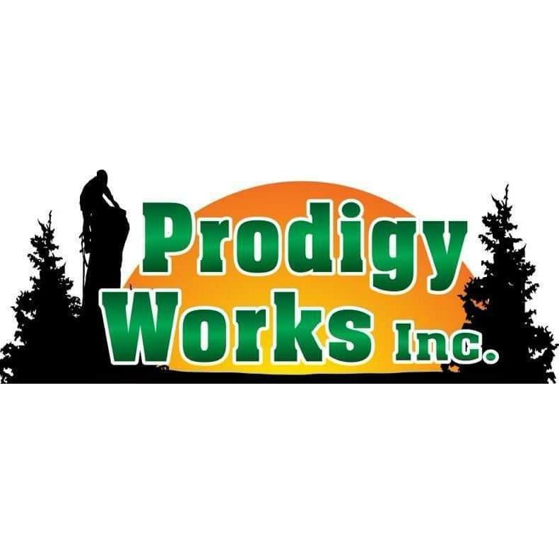 Prodigy Works Logo