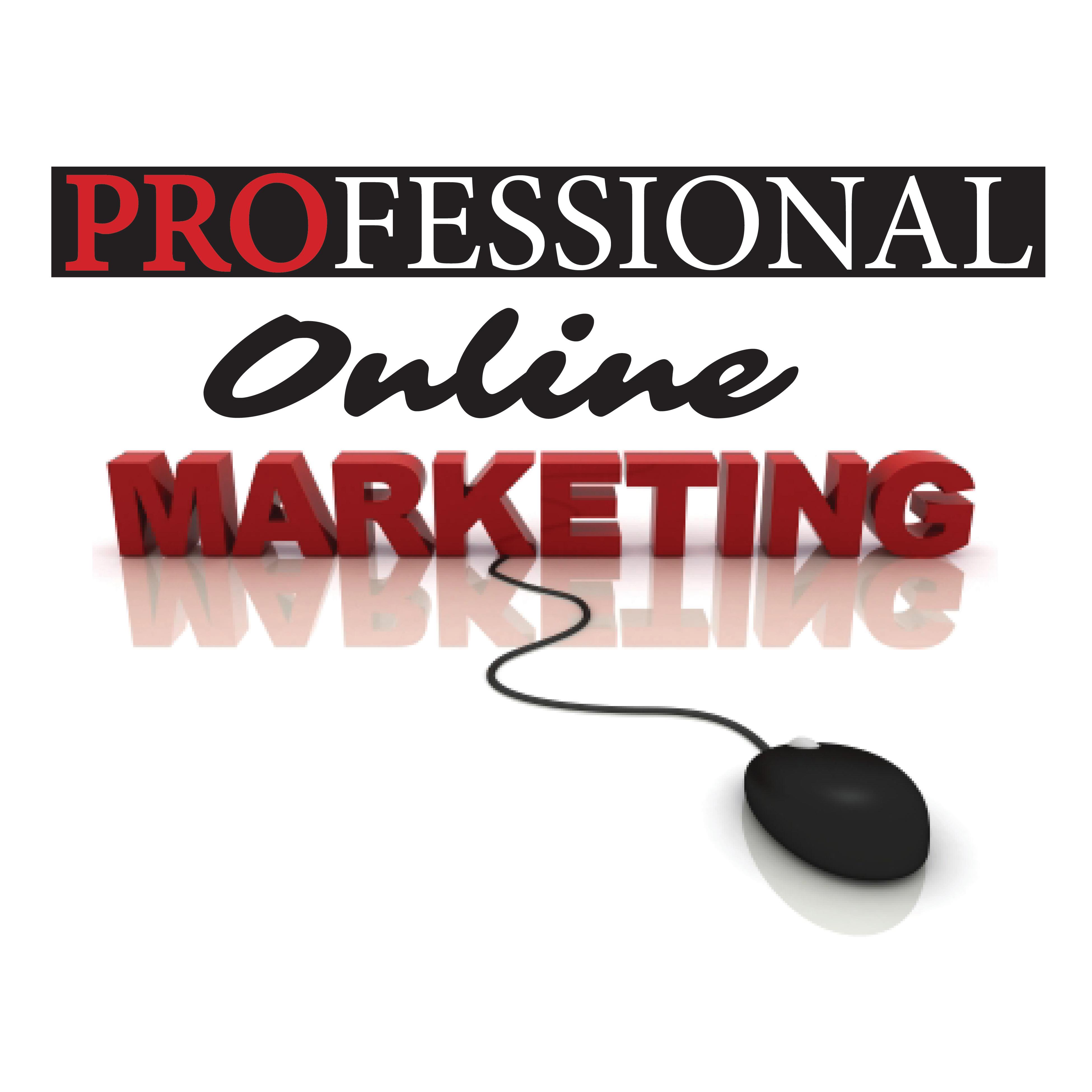 Professional Online Marketing LLC Logo