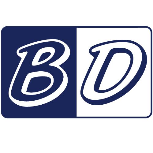 Budget Dumpster Rental Logo