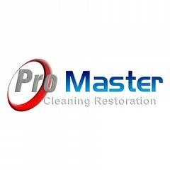 Pro Master Cleaning Restoration Logo