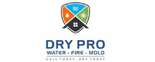 DRY PRO Emergency Flood Service Logo