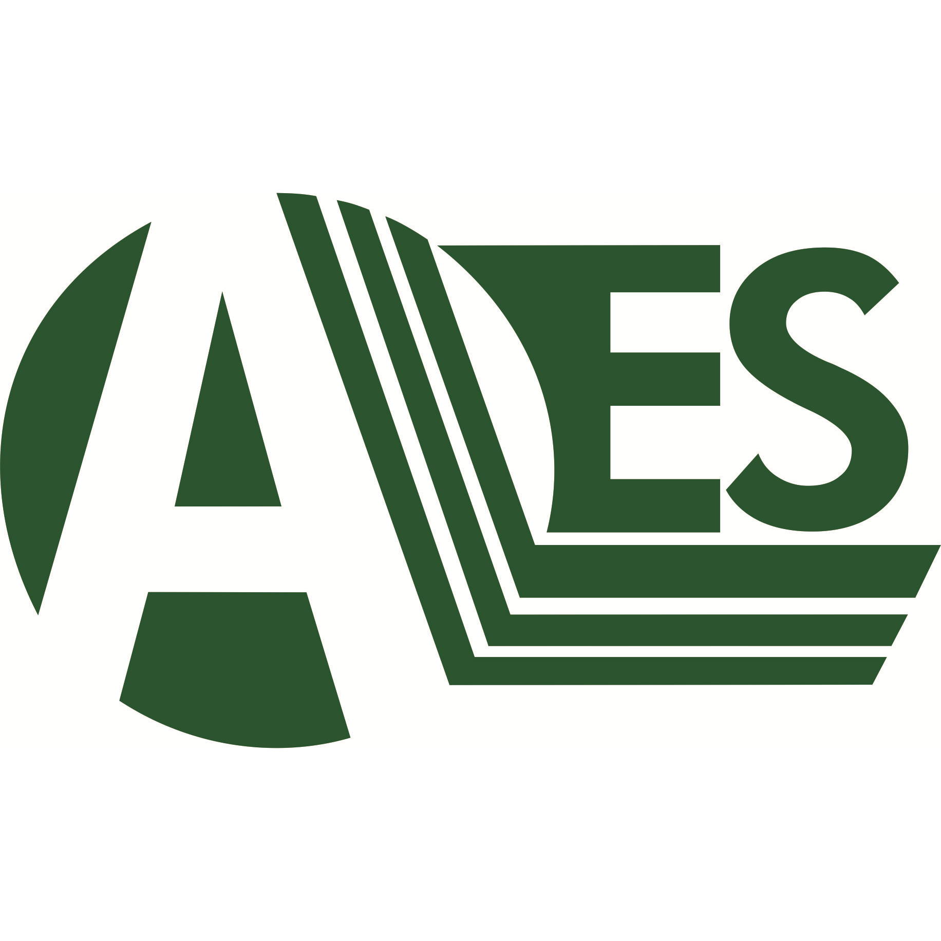 Air Environmental Services Logo