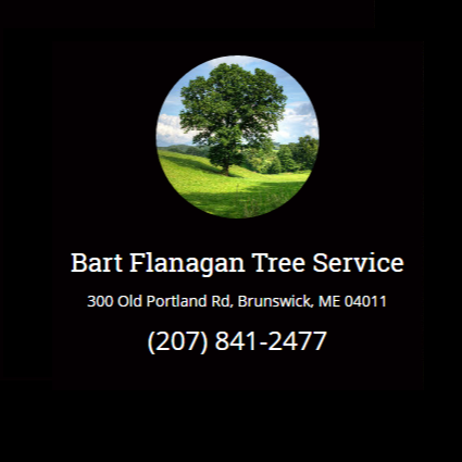 Bart Flanagan Tree Service LLC Logo