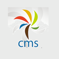 CMS Internet LLC Logo