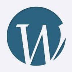 Webster Orthopedics Logo