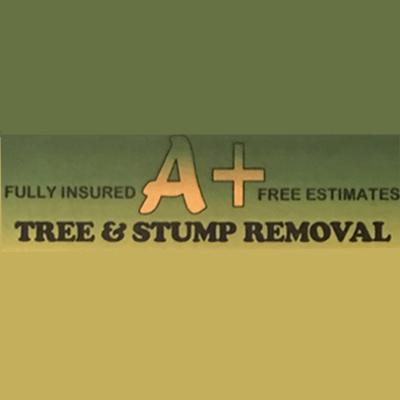 A + Tree & Stump Removal Logo