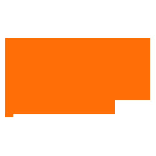 Northeast Gutter Pro Logo