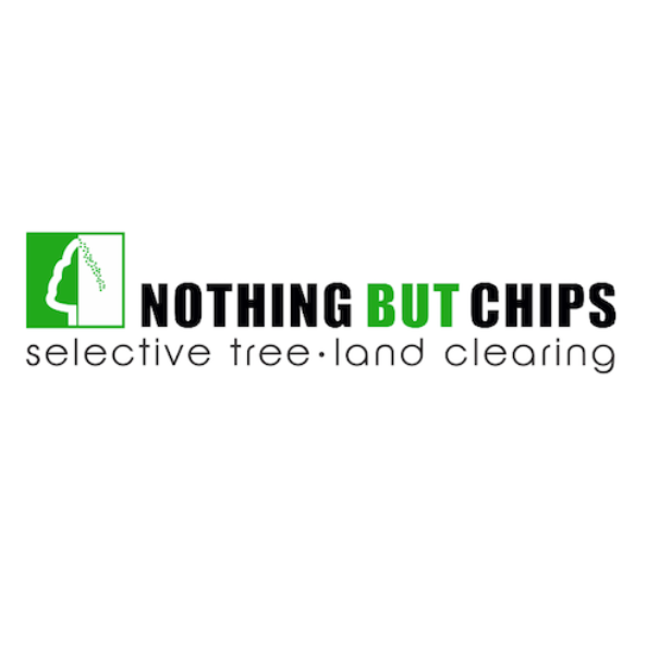 Nothing But Chips Logo