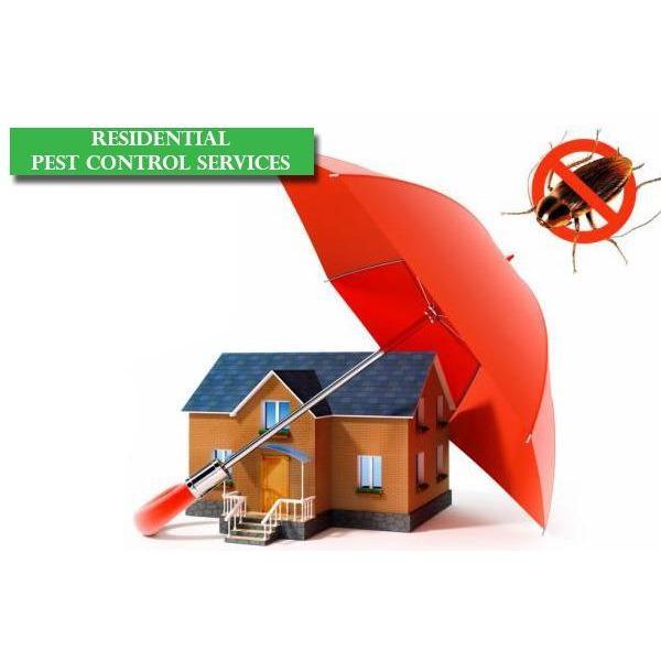 Pest Control Masters Logo