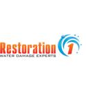 Water/Fire Logo